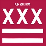 Various Artists, Flex Your Head, 12