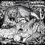 Various Artists, Organ Dealer, Invertibrate, Nerve Grind, 7